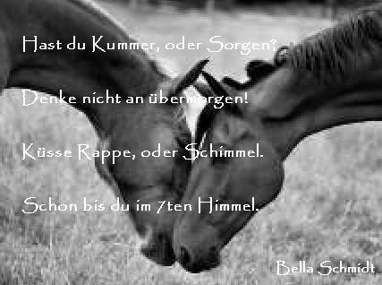 sprüche über pferdeliebe Pferdeliebe   Ein Bildgedicht von Bella Schmidt sprüche über pferdeliebe